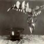 Vasi di Murano
