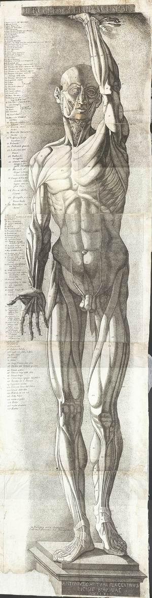 Antonio Cattani (attivo Bologna 1780), da Ercole Lelli (Bologna, 1702-1766)  Spellato, 1780 Acquaforte e bulino