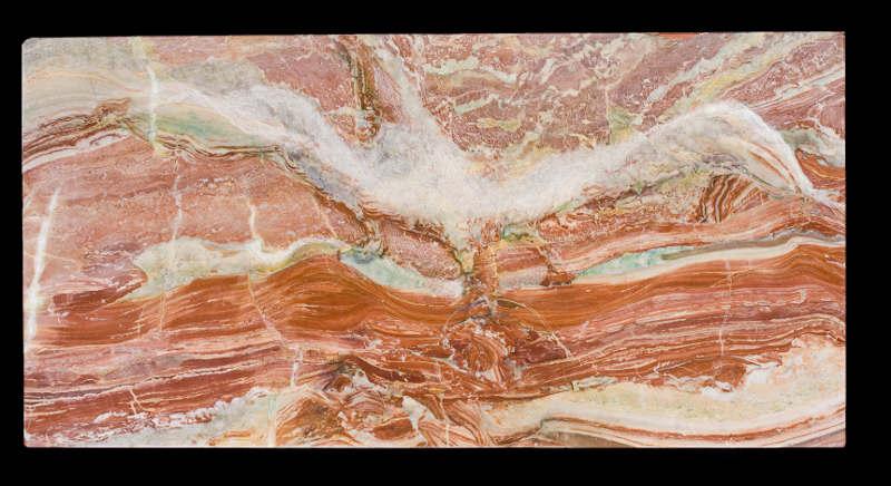 Albatros graffito su marmo arabescato rosso robico proprietà dell'artista
