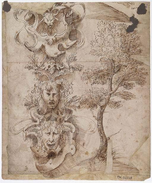 Domenico Campagnola (Venezia ante 1500 - Padova 1564)  Studio di albero e di candelabra (verso) penna e inchiostro bruno