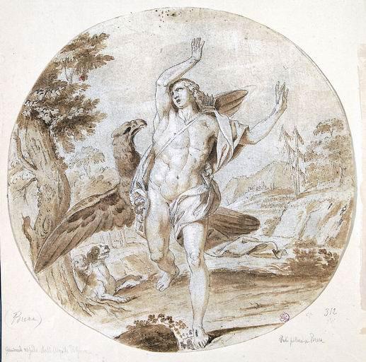 Giovan Battista Dell'Era (Treviglio, Bergamo 1765 - Firenze 1799) disegno preparatorio per il dipinto Il ratto di Ganimede matita a grafite, penna inchiostro bruno acquerellato, biacca