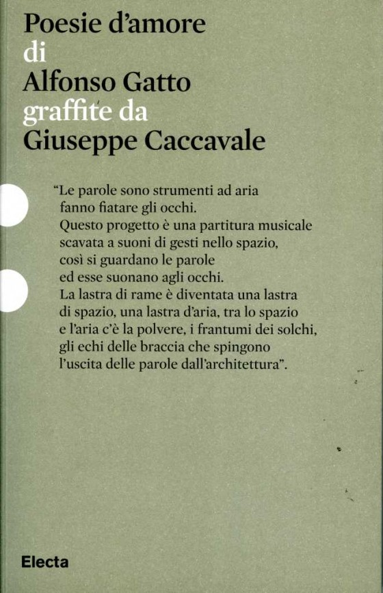 2010 Caccavale